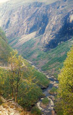 Blick ins grüne Tal, Foto: S. Kretschmer