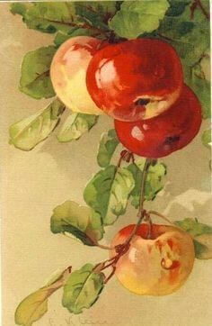 Painting by Catherine Klein art and beauty Watercolor Fruit, Watercolour Painting, Watercolor Flowers, Painting & Drawing, Apple Painting, Fruit Painting, China Painting, L'art Du Fruit, Fruit Art