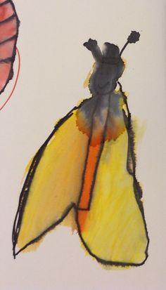 Vlinder van Alex