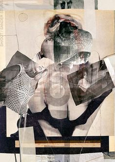 Beautiful collage art by Sander Steins. Click for more images