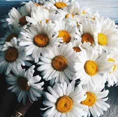 """Oh my gosh! I love daisies; how did you know?"" She grabbed them from his hands. He looked at her, a flash of something dark crossing his eyes. ""You told me."""