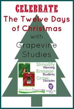 Grapevine Studies birth of Jesus Homeschool High School, Homeschool Kindergarten, Homeschool Curriculum, Homeschooling, Advent Activities, Christmas Activities, Christmas Crafts, Twelve Days Of Christmas, Birth Of Jesus