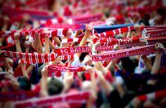 Allianz Arena - supporters FC Bayern Munich