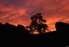 Joshua Tree National Park: It's National Parks Week And California Boasts 8 Amazing Parks To Choose From (PHOTOS)