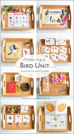 Montessori-inspired bird unit activities for preschoolers - Preschool Activities Science Montessori, Montessori Trays, Montessori Homeschool, Montessori Classroom, Montessori Toddler, Preschool Curriculum, Montessori Materials, Preschool Science, Preschool Learning