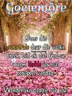 Good Morning Good Night, Good Morning Wishes, Day Wishes, Good Morning Quotes, Lekker Dag, Goeie Nag, Goeie More, Afrikaans Quotes, Morning Pictures