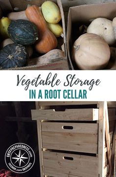 Vegetable Storage in a Root Cellar — As the growing season draws to a close and the winter months approach, it's time to think about storing food for the winter. Freezing and canning are a great option and can definitely extend the shelf life of your harvest.
