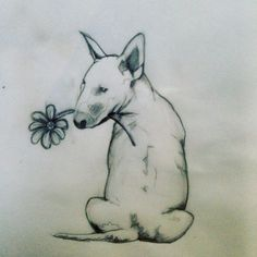 #study #tattoo #bull #terrier #sisters #sketch# Bull Terrier Tattoo, Bull Terriers, Time Tattoos, Tatoos, Drawing Sketches, Sketching, Skin Art, Animal Drawings, Tatting