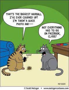 Funny cartoon - http://jokideo.com/funny-cartoon-28/