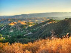 Mt Diablo State Park, 3,485 ft with huge views of the Bay Area. Many hiking trails. Mountain Lions are not unknown here, so take care!