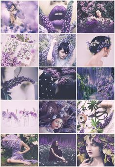 Wisteria/Lupinus/Lilac Fairies aesthetic