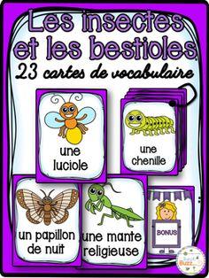 Cartes de vocabulaire sur les insectes et les bestioles.