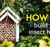 Lure beneficial Insects and Bugs into your Garden How to build a Insect Hotel