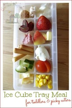 Ice Cube Tray Meals - for picky eaters - small portions of healthy snacks.  Call it The Snack Tray. #charlottepediatricclinic