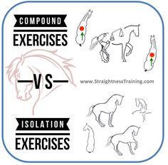 Compound Exercises vs Isolation Exercises