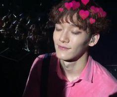 idols with hearts 💗 Exo Chen, Baekhyun Chanyeol, Pretty People, Beautiful People, Types Of Boyfriends, Shimmy Shimmy, Do Kyung Soo, Kim Junmyeon, Quality Memes