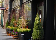 The urban garden outside of the Ace Hotel New York City designed by Roman & Williams