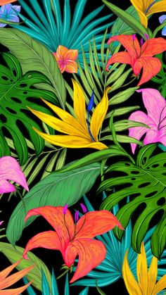 Pattern, tropical, flowers, leaves, 720x1280 wallpaper