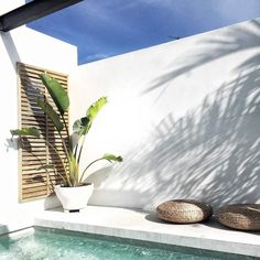 Having a pool sounds awesome especially if you are working with the best backyard pool landscaping ideas there is. How you design a proper backyard with a pool matters. Outdoor Pool, Outdoor Spaces, Outdoor Living, Appartment Design, Exterior Design, Interior And Exterior, Courtyard Pool, Courtyard Ideas, Rooftop Terrace