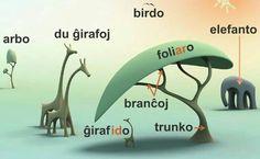 "Képtalálat a következőre: ""esperanto"" Esperanto Language, Vocabulary, Foreign Language, Let It Be, Teaching, Nature, New Adventures, Languages, Naturaleza"