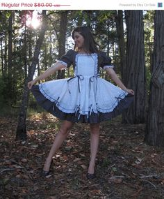 Vintage Square Dance Dress or French Maid Costume