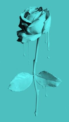 Blue Aesthetic Discover blue roses original in pink - Wallpapers Pins Teal Wallpaper Iphone, Blue Roses Wallpaper, Turquoise Wallpaper, Aesthetic Iphone Wallpaper, Iphone Wallpapers, Mint Green Aesthetic, Blue Aesthetic Pastel, Aesthetic Colors, Aesthetic Backgrounds