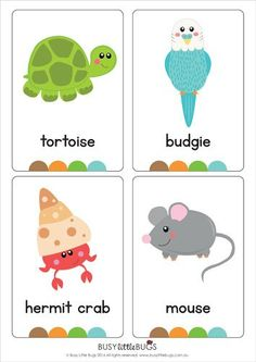 "Our set of printable ""My Pets Flash Cards"" are a great learning tool for early literacy and would be a great addition to a health unit. All brightly coloured and of high quality.  There are 14 brightly coloured, high quality printable flash cards in this pack containing common pets such as guinea pig, cat, mouse, hamster etc"