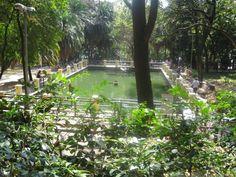 Tour Y: Parque da Água Branca