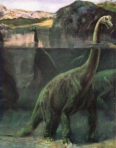 [Dino Art] A Classic Semi-Aquatic Brachiosaurus - Charles R. [Dino Art] A Classic Semi-Aquatic Brachiosaurus - Charles R. Prehistoric Dinosaurs, Prehistoric World, Dinosaur Fossils, Dinosaur Art, Prehistoric Creatures, Dinosaurs Alive, Dinosaur Crafts, Illustration Photo, Illustrations