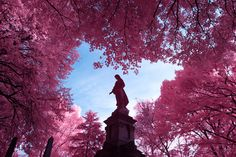 ITAP of a Statue in Infrared at Green-Wood Cemetary NYC http://ift.tt/2fEGYiP