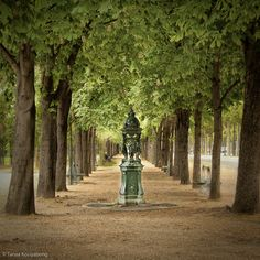 Discover the world through photos. The Englishman, Fountain Design, Champs Elysees, Day Of My Life, Trip Planning, Sidewalks, Adventure, Landscape, Buckets