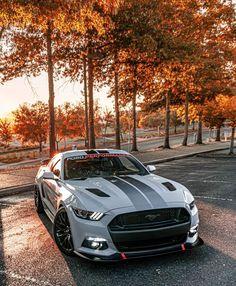 Ford, Skyline Gtr, Chevrolet Camaro, Sport Cars, Dream Cars, Bmw, Vroom Vroom, Vehicles, Wallpapers