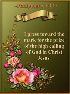 Philippians 3:14 KJV