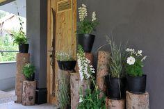 Natur erleben Plants, Chalets, Luxury, Pictures, Plant, Planets