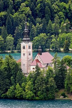 Slovenia - Lake Bled - Church on the Lake (by Darrell Godliman)