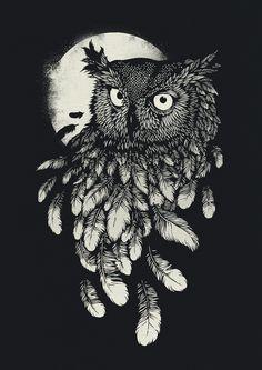 #coruja