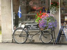 Flower Delivery by Lazy B, via Flickr vintage bicycle to display fowers outside shop