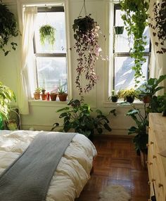 The perfect place to wake up every morning | pic via @urbanjungleblog