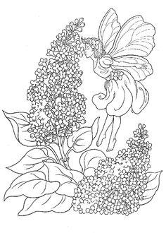 kleurplaten voor volwassenen bloemen - Google zoeken