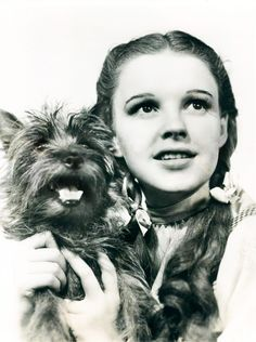 """I've always taken 'The Wizard of Oz' very seriously, you know. I believe in the idea of the rainbow. And I've spent my entire life trying to get over it. ""   — Judy Garland"