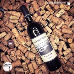 Today is the wine #throwbackthursday. With this blend of over 50 grapes variety  from #cadelVent #clavis . 17 years for this non filter red wine from north italy. This is our last bottle so... it will stay with me for some years more. . #tbt #throwbackwine #amarcord #oldWine #oldlabel #wine #wineporn #instawine #sommelier #italy #piedmont #italianwine #instavini #winelover #winetasting #personalsommelier #winekeller #amateurwein #vinho #vino  #winecellar #cantina  #madeinitaly #cantinasocial…