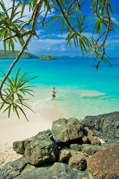Cinnamon Bay, St. John, U.S. Virgin Islands. #caribbean