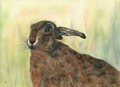 Hare Print Featuring Unique Original Artwork  'Turning to