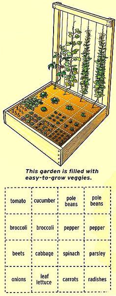 Easy to Grow Vegetable Garden.