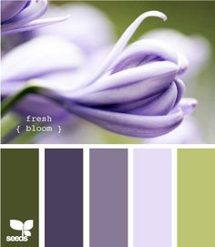 Purple/Green color scheme by Lizzy716