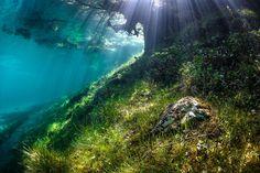 L'image est si nette que l'on croirait qu'il n'y a pas d'eau. Pourtant, il s'agit bien d'une photo prise lors d'une plongée de Marc Henauer dans le lac Vert. À son niveau le plus bas, le lac Vert a une surface d'environ 2.000 m2. À son niveau le...