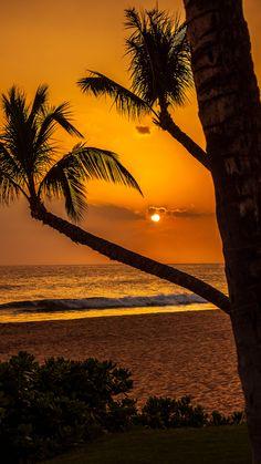 Tropical Sunset   Beautiful Pictures – Közösség – Google+