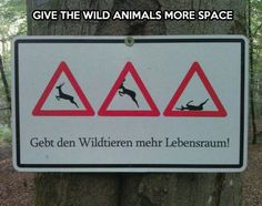 Wild animals need more space...