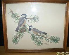 Vintage Bird Print CHICKADEES sherm pehrson Framed Art pine branches pinecone