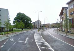 Mature Lime Tree, retained in new town development, Adamstown, Dublin.